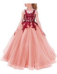 Girls Pageant Ball Gowns Kids Chiffon Embroidered Wedding...