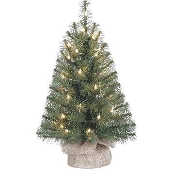 Amazon.com: Pre-Lit 2' Noble Fir Artificial Christmas Tree, Clear ...