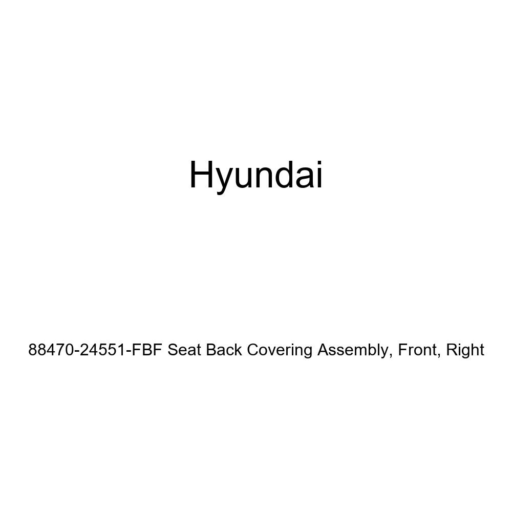 Right Front Genuine Hyundai 88470-24551-FBF Seat Back Covering Assembly