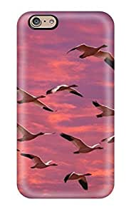 ClaudiaDay Design High Quality Birds Cover Case With Excellent Style For Iphone 6