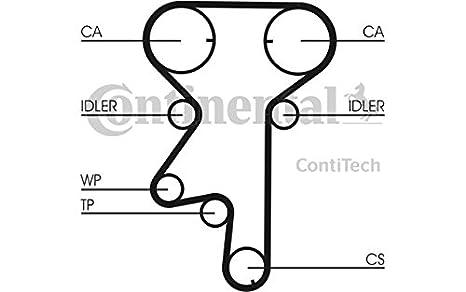 Contitech - ct975wp5 Bomba de agua + - Correa de distribución: CONTITECH: Amazon.es: Coche y moto
