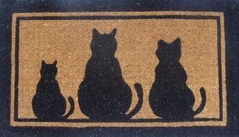 Kokosfussmatte Fussmatte Katzen 73x43 Cm Amazon De Drogerie