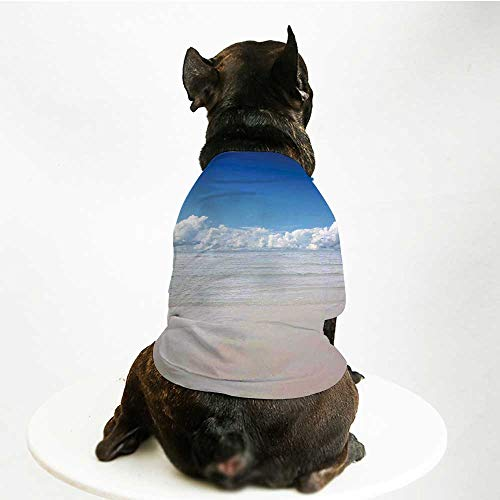 YOLIYANA Ocean Fashion Pet Suit,Magical Sea to Sky View with Clouds Nature Exotic Beach in South Asia Paradise Hot for Cats and Dogs,M