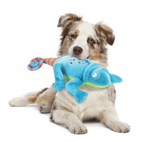 Dog Toys For Big Dogs That Chew Amazon