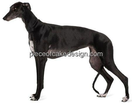 2-round-greyhound-dog-birthday-edible-image-cake-cupcake-topper