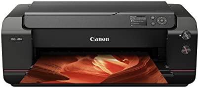 Canon Pro 1000 - Impresora Foto A3, 2400 PPP, USB, 12 tintas ...