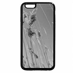 iPhone 6S Case, iPhone 6 Case (Black & White) - Grass stems autumn