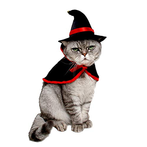 Halloween Costumes For Two Dogs (LAWOHO Pet Halloween Costume - Vampire Cloak and Wizard Hat for Holiday Cosplay Party Pet Apparel Suit Cute Kitten Puppy Cape Clothes Suitable for Small Cat Dog Parrots 2 Packs)