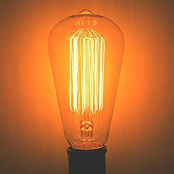 60 Watt Nostalgia Era Squirrel Cage Filament Bulb