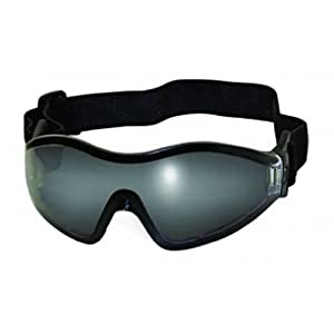 Global Vision Eyewear Z-33 Anti-Fog Safety Goggles with Pouch, Smoke Tint Lens