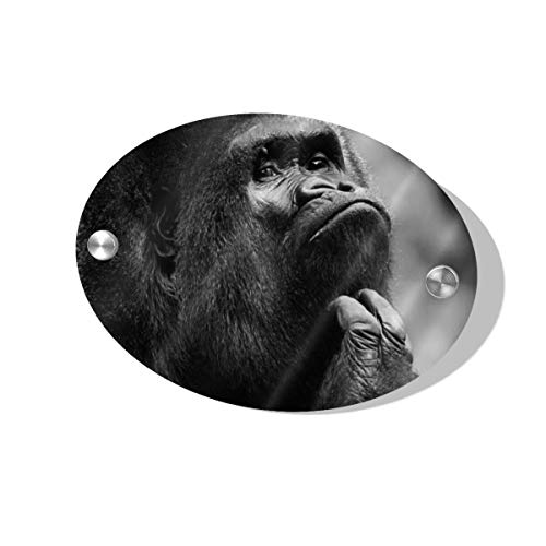Rod Whitehead Gorilla Little Monkey Fun Bar Door Sign Country Farm Kitchen Wall Home Decor Art Signs Vintage Plate Poster Plaque Living Room Bedroom House Signs Decoration Gift for Friend