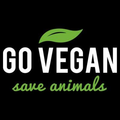 Sudadera con capucha de mujer Go Vegan Save Animals by Shirtcity Negro