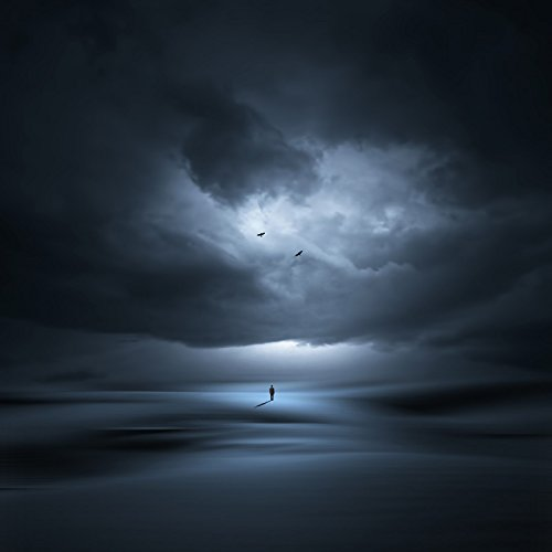 A New Dawn (12×12 in) (Limited Edition on Canvas) by Philip McKay