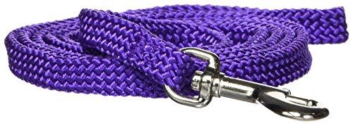 Hamilton Poppies Series Flat Braid Nylon Dog Lead, 3/8-Inch by 4-Feet, Purple