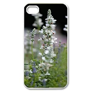 Beautiful flowers for iPhone 4/4S Phone Case OIK383136