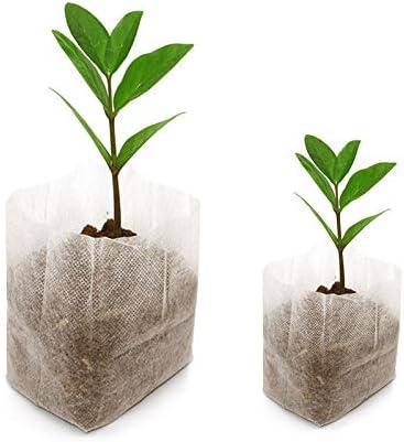 200 pcs Biodegradable papel planta plántula bolsas bolsas de tela ...
