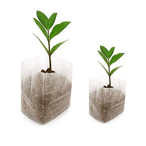 200 pcs Biodegradable papel planta plántula bolsas bolsas de tela crecer cría (16 x 20 cm + 8 x 10 cm)