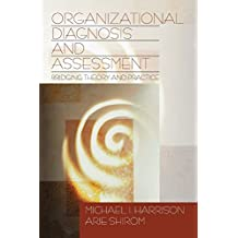 Organizational Diagnosis and Assessment: Bridging Theory and Practice