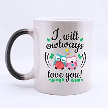 Amazon Com All Things Amz Cute Owl Couple I Will Owlways Love You