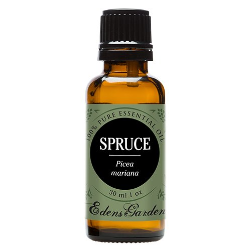 Spruce 100% Pure Therapeutic Grade Essential Oil by Edens Garden- 30 ml