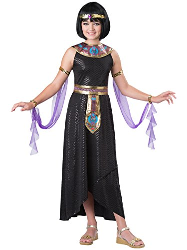 InCharacter Costumes Enchanting Cleopatra Costume, One Color, Size 8 (Egyptian Costumes For Children)