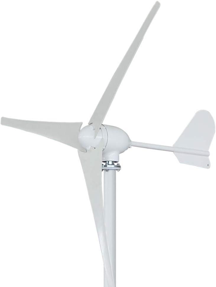 XDDWD Aerogenerador de 500 W con Controlador,12V5Blades