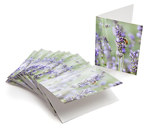 (Lavender and Honey Bee, 10 Premium Note Cards and Envelopes, Blank Inside, 4