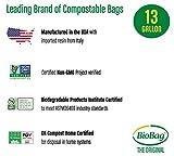 BioBag Compostable Kitchen Food Scrap Bags, 13