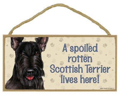 SJT ENTERPRISES, INC. A Spoiled Rotten Scottish Terrier Lives here Wood Sign Plaque 5