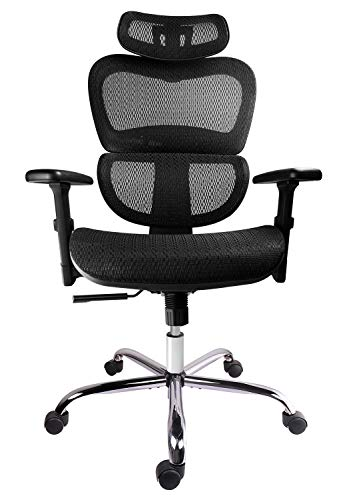 Smugdesk Mesh Adjustable Headrest, Lumbar Support, 3D Armrest Office Chair Dark Black