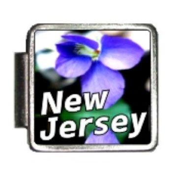 New Jersey State Flower Violet Photo Italian Charm Bracelet -