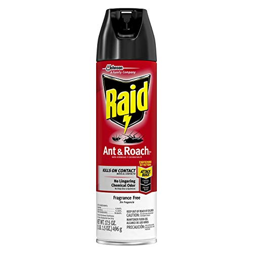 (Raid Ant & Roach Killer Unscented 17.5 oz. (Pack of 12))