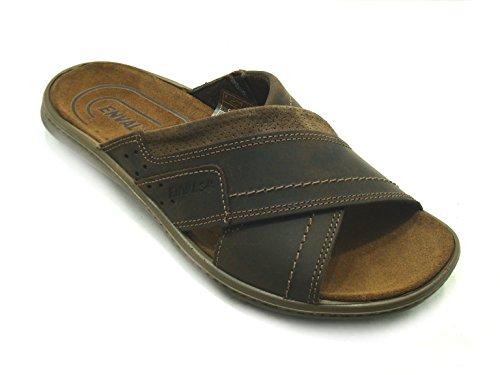 Enval Soft Men's Slippers Brown Brown oSOY2KgO