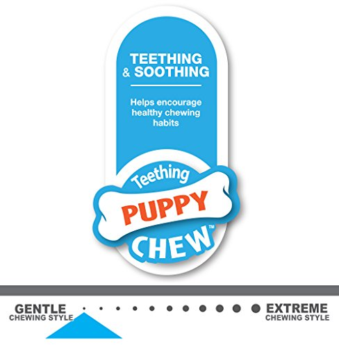 Large Product Image of Nylabone Just For Puppies Petite Pink Dental Bone Puppy Dog Chew Toy