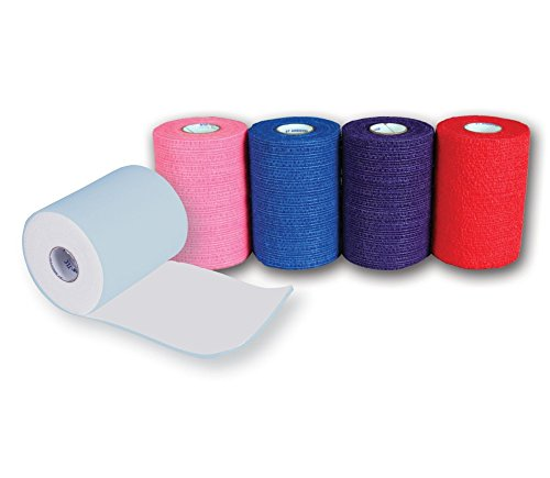 Andover Healthcare 7800-TLC-CP 2 Layer Coflex Bandage, Colorpack (Pack of 16)