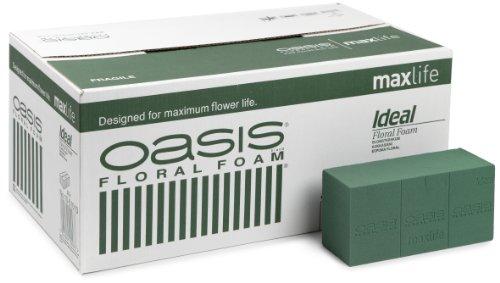 Oasis Ideal Frischblumen-Steckschaum Maxlife, 20 Ziegel