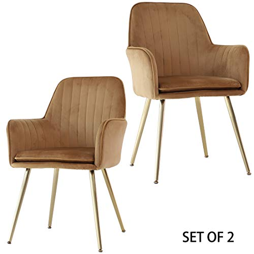 GOLDEN BEACH Set of 2 Elegant Velvet Dinning Chair Mid-Back Support Accent Arm Chair Modern Leisure Upholstered Chair with Gold Plating Legs (Gold Brown)