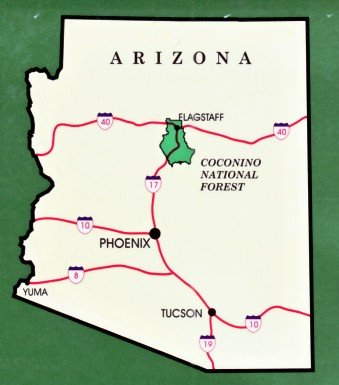 Coconino National Forest Map Waterproof