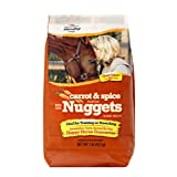 Manna Pro 0092944252 Carrot and Spice Horse Treat, 1-Pound