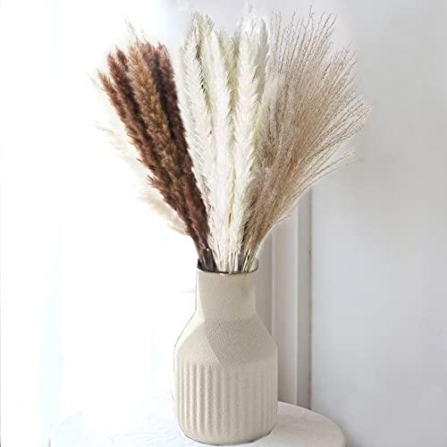 COREAET Natural Dried Pampas Grass, 60 Pcs ( 30 Pcs Reed Grass + 15 Pcs White Pampas + 15 Pcs Brown Pampas ), 18 inch Flowers Bouquet, DIY Boho Plant, Flower Arrangements for Home Decor Wedding Party.