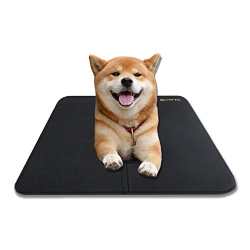 Top 30 Best Cooling Mats For Dogs Available in 2019 | Pet