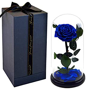 Smequeen for Women Hand Made Preserved Rose 4''Never Withered Roses Flower in 12.5'' Glass Dome, Gift for Valentine's Day Anniversary Birthday 10