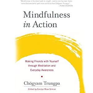 Mindfulness in Action Audiobook