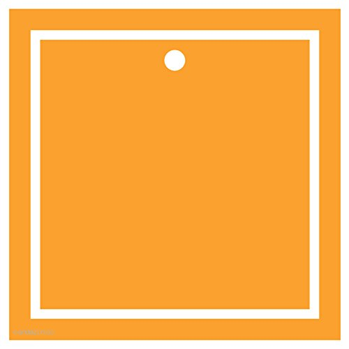 Andaz Press Square Gift Tags, Solid, Blank, Orange, 24-Pack