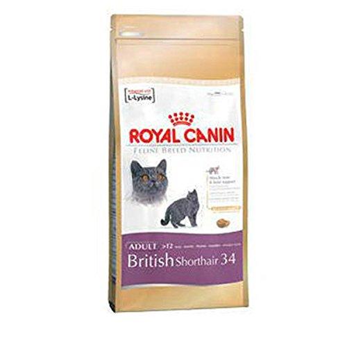 Royal Canin British Shortair Gato 10 kg