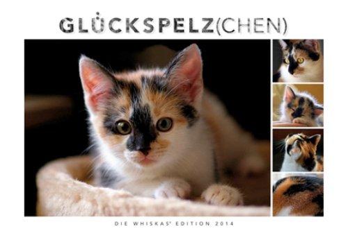 Whiskas Katzenkalender 2014: Mit Katzengeschichten
