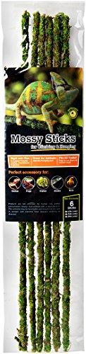 "41 vGTSVM6L - Galapagos (05320) Mossy Terrarium Sticks (6 Pack), 18"""
