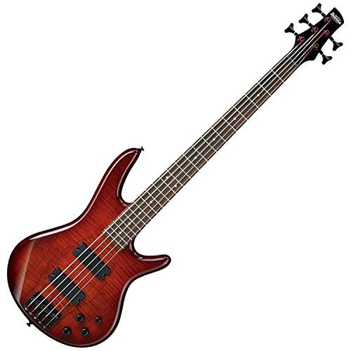 Ibanez GSR205SMCNB 5-String Electric Bass Guitar – Charcoal Brown Burst