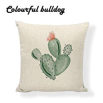 Amazon.com: awaneders Tropical Desert Plant Cactus Cushion ...