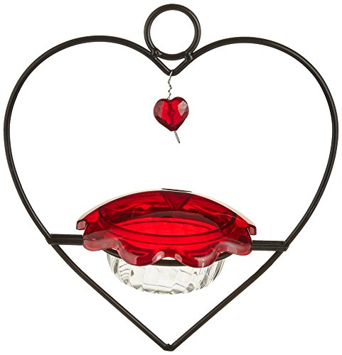 Bird's Choice Hummingbird Heart Feeder Medium Red